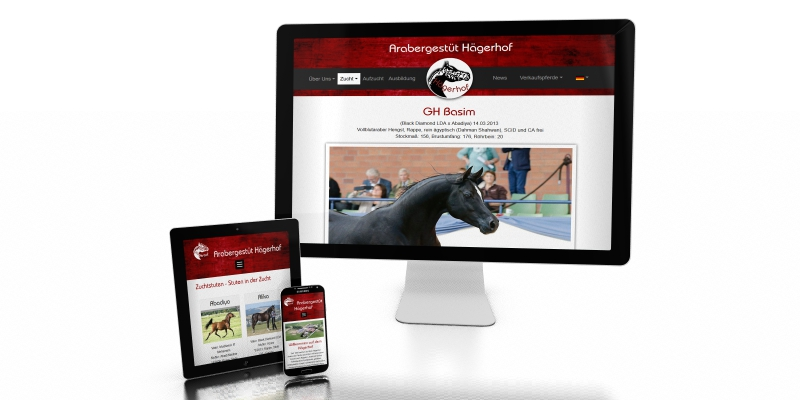 RELAUNCH Website Haegerhof Stud
